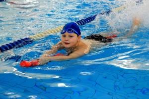 nauka pływania - jesień 2016 - żółwiki na fali (101)